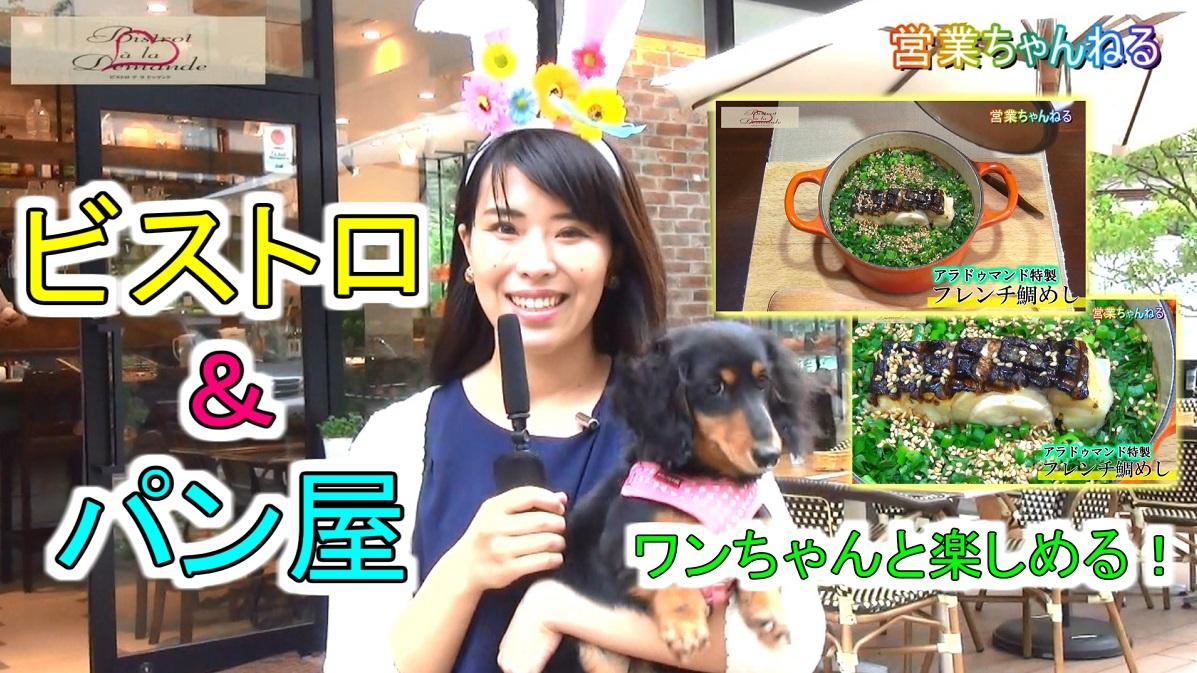 【ビストロアラドゥマンド】ペット同伴可のテラス席有 港区 田町駅近く