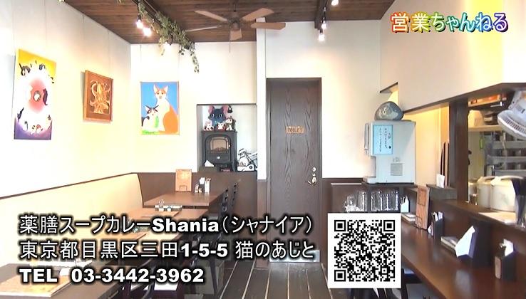 薬膳スープカレーShania店内風景1.jpg