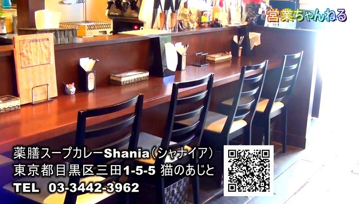 薬膳スープカレーShania店内風景2.jpg