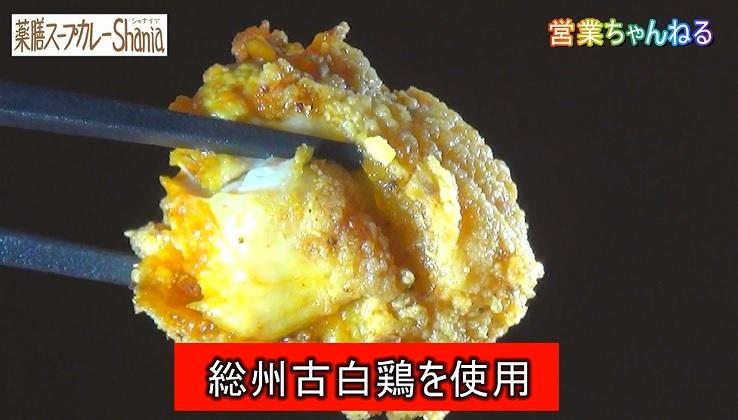 薬膳スープカレーShania2.jpg
